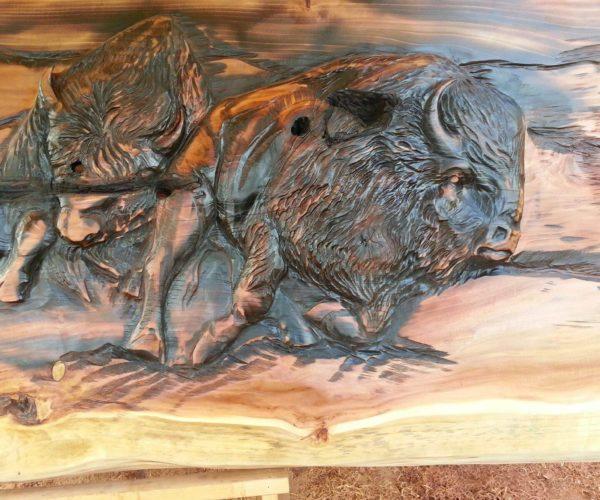 bison run detail