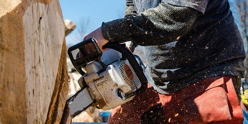 Chainsaw carving classes tomas vrba studio